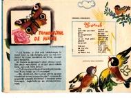 arici-pogonici-07_1969_0008