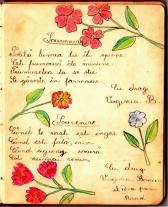 album_arad_1940_0003