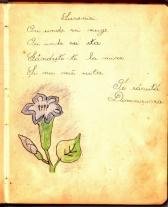 album_arad_1940_0004