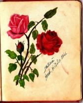 album_arad_1940_0030