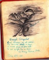 album_arad_1940_0031