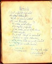 album_arad_1940_0049