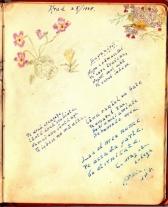 album_arad_1940_0051