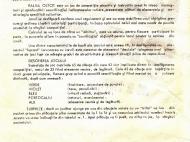 raliul_oltcit__0002b_resize