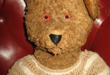 Ursulețul din copilărie